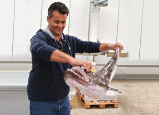 Wet Fish trading