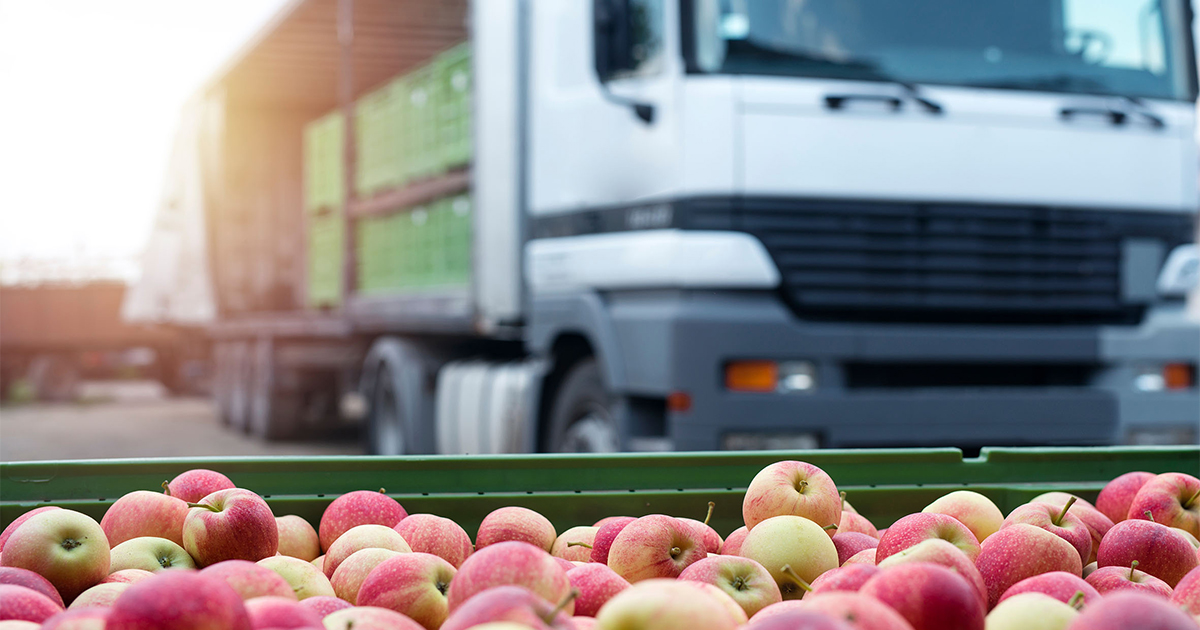 New Zealand, Dubai to trial paperless food export certification
